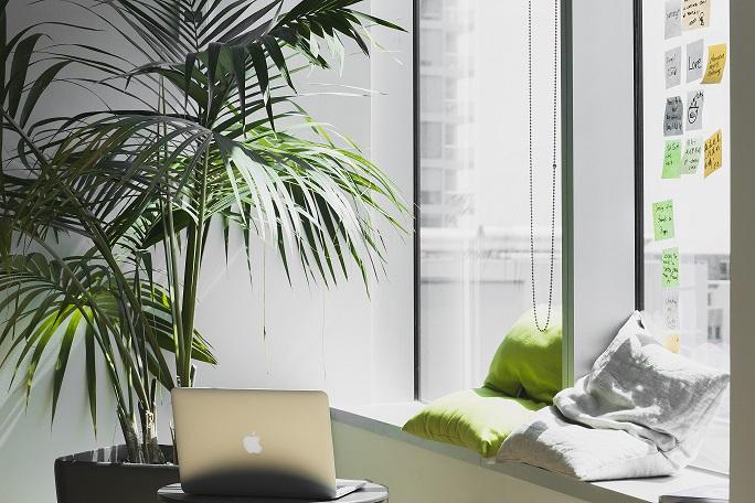 limpieza energética de una oficina o espacio de trabajo